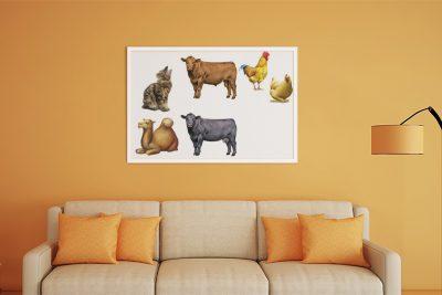 تصاویر حیوانات با کیفیت عالی